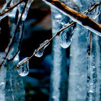 Untitled ice drops 20141220.jpg